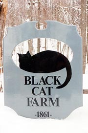 Black Cat Farm