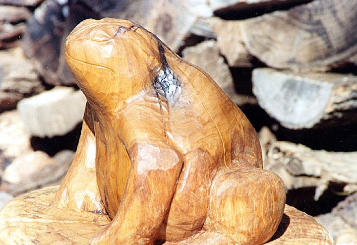 Chainsaw chisel carvings